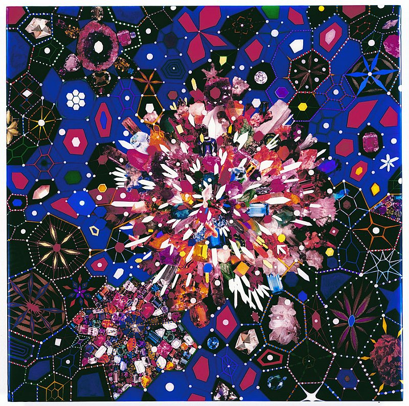 fred-tomaselli-2