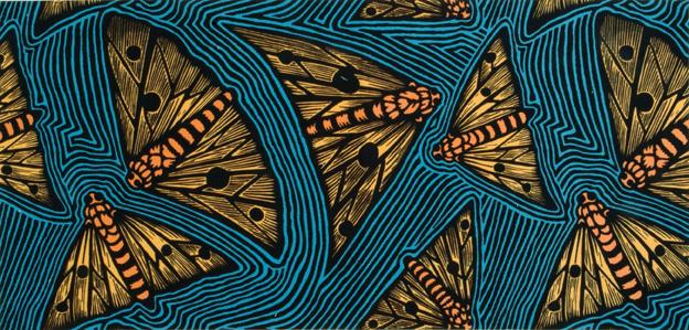 mothsbrucegoold