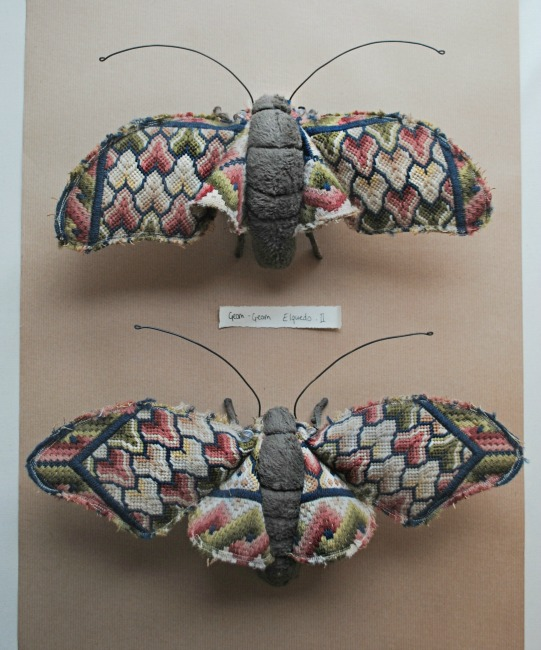 geometric moths small