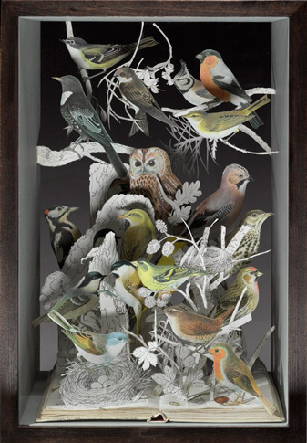 2008-book-of-birds