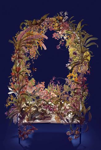 orchids-blue-web